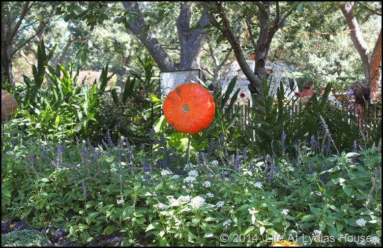 Dallas Arboretum - pumpkin festival-pumpkin 1