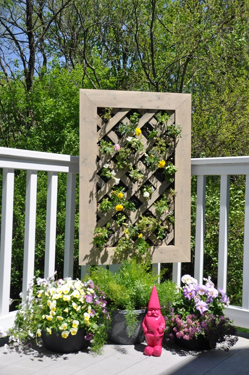 Flowers for a Vertical Garden #DigIn