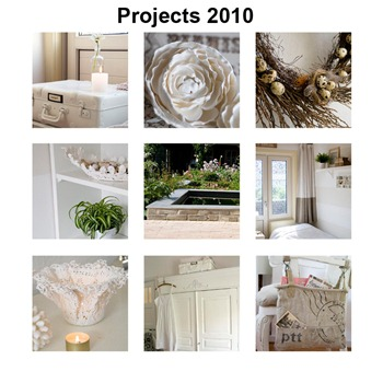 Top Projects 2010