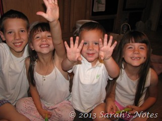 Aug 07 2011 011