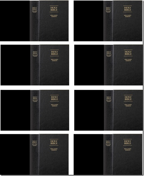 mini bible covers