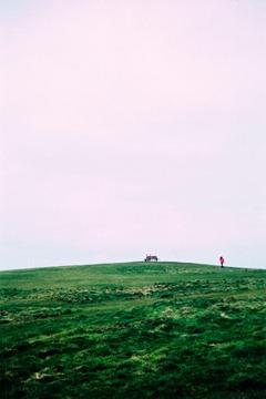 Grass-Field---XPRO