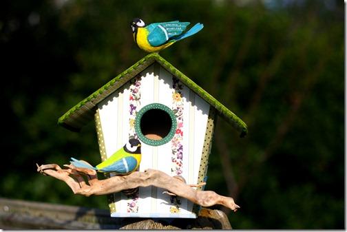 Bird house-004