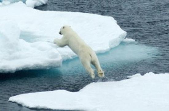 los hielos de Groelandia se derriten