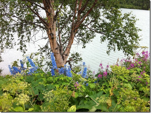 Alaska_Aug2011 035