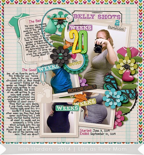 2nd Trimester - Trish Harden - Life As Their Mom