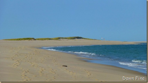 cape cod_010