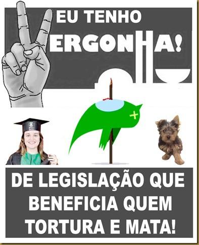 vergonha_brasil
