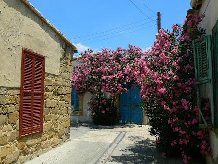 Nicosia streets