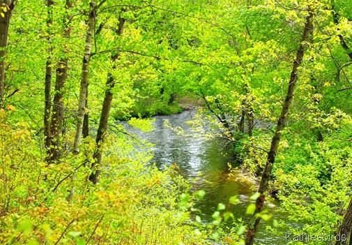 13. watery green-kab