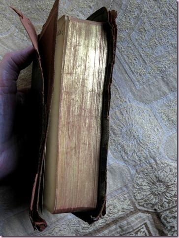 BibleIMG_1197