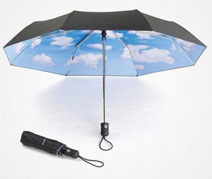 umbrella-1611