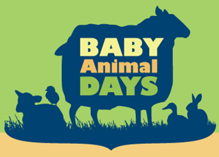 Baby Animal Days LOGO