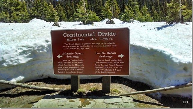 06-19-14 A Trail Ridge Road RMNP (338)