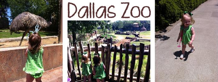 Dallas Zoo Collage
