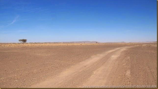 Desierto-217