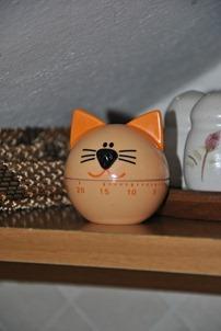 cat 011