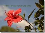WTML-201317_thumb1