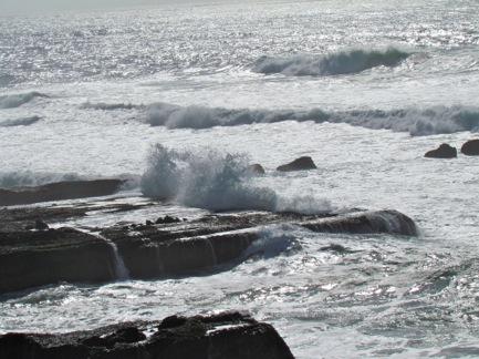 OceanBluffsTrail-49-2012-03-25-22-19.jpg