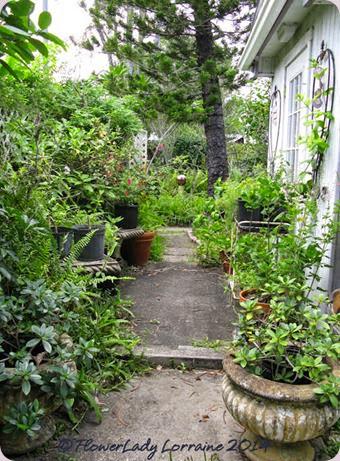 09-16-patio-path