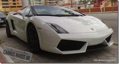 Lamborghini Gallardo LP 560-4 (3)[3]