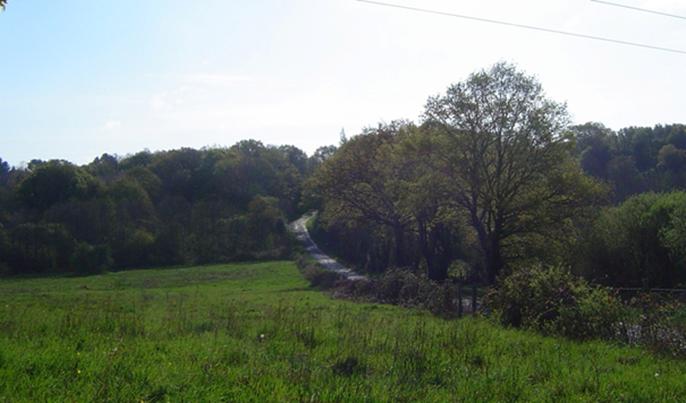 La route qui va de La Ménardais à La Loeuf souligne le relief de la butte bordière de La Loeuf