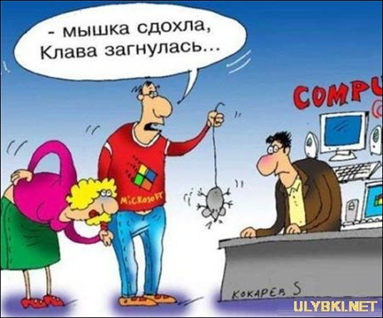 myshka_sdohla_klava_sognulas_20110812114240