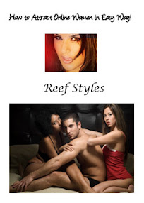 Cover of Reef Styles's Book How To Attract Online Women In Easy Way