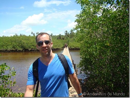 Ponte sobre o Mangue do Rio Tatuamunha Rota Ecológica de Alagoas