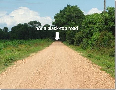 blogpic6 not blacktop