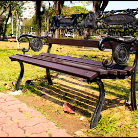 Park Bench #2 by Patrice Schwarz - Artistic Objects Furniture ( bangkok, sit, park, bench, thailand, down, parkbench )