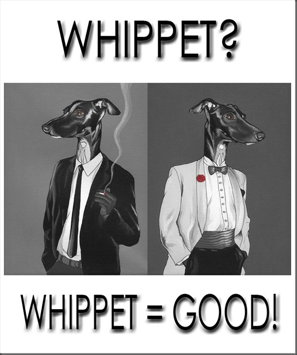 Whippets-03