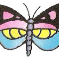 borboleta colorida.jpg