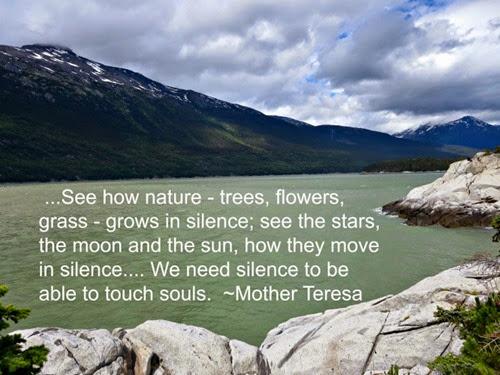 Nature is Quiet and Bird Watching