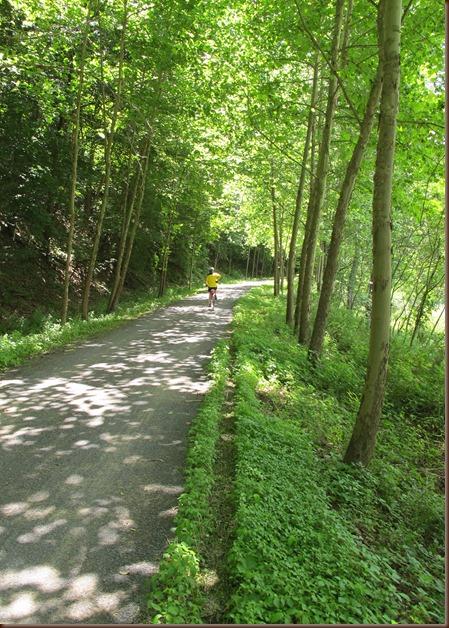 trail in sunlight