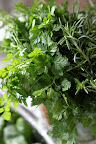 And Franny, take a look at this very fragrant chervil and rosemary.