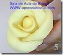 Rosa de biscuit 5
