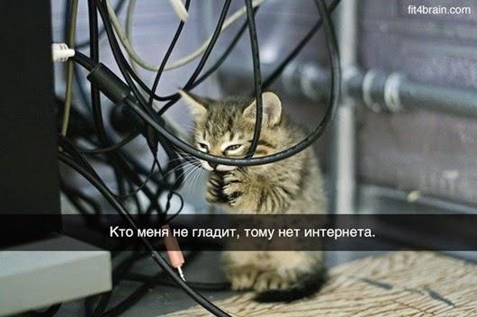 0_f17d9_47d93311_orig