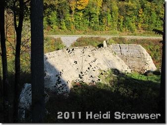 fall 2011 037