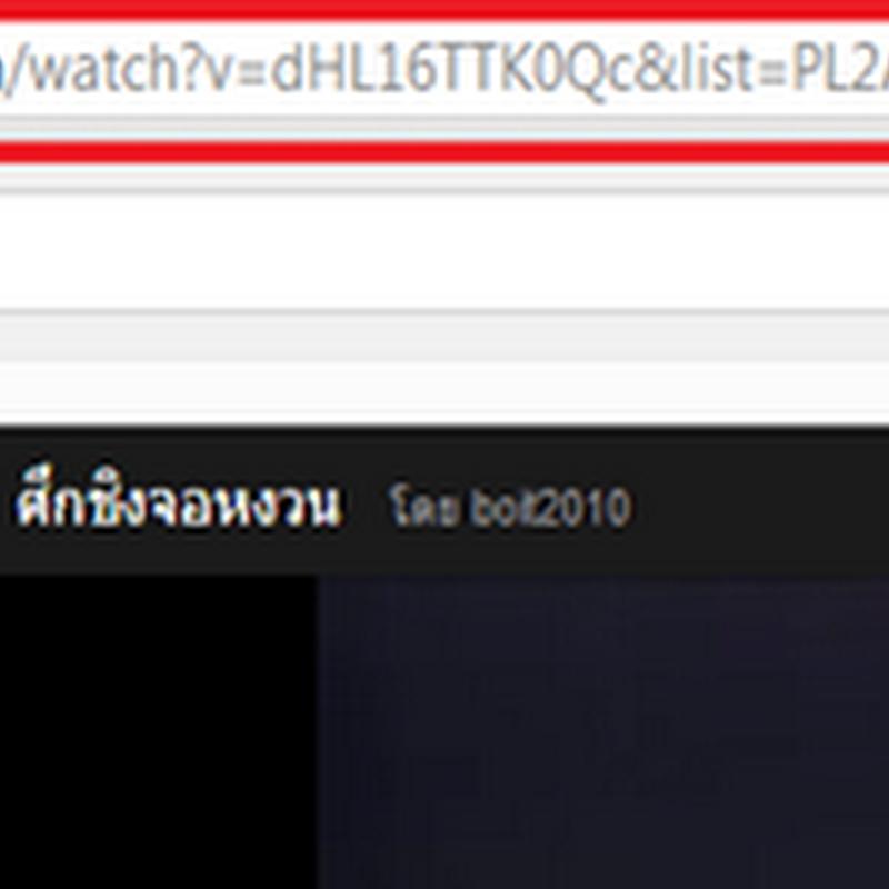 โปรแกรมดาวน์โหลดวีดีโอจาก Youtube ทั้ง Playlists พร้อมแปลงลงแผ่น Dvd