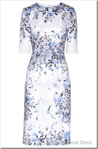 Erdem Ivy floral-print cotton-sateen dress
