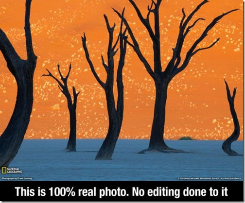 great_images_that_go_together_with_astounding_facts_640_10