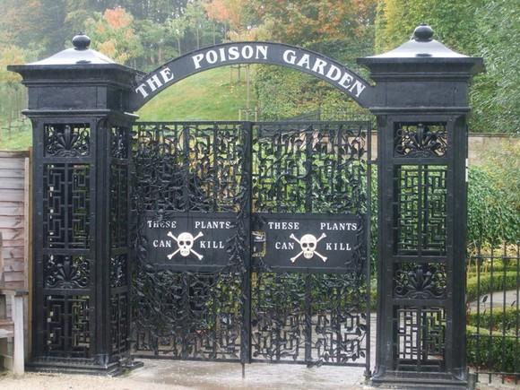 poison-garden-3[5] (1).jpg