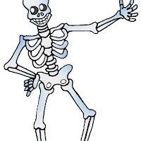 science_skeleton.jpg