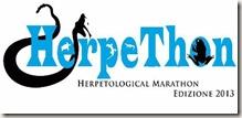 HerpeThon 2013