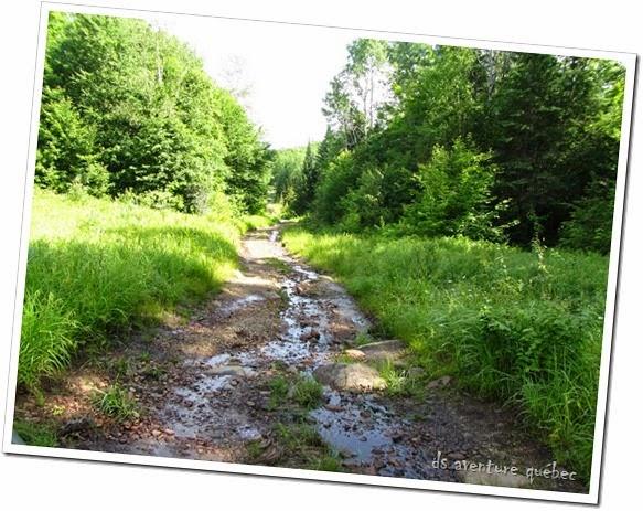 DS Aventure Quebec - La 3 Nord, une des sections les plus accidentèes - Parc Papineau Labelle