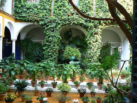 Imagini Andaluzia: Patio andaluz