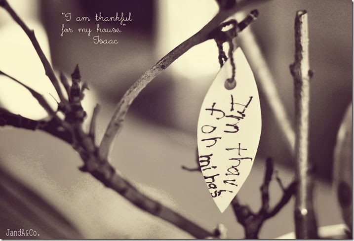 Thankful Tree-0323