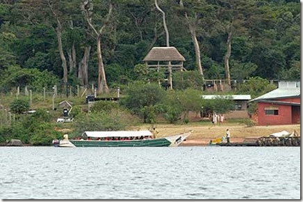 Ngamba Island Chimpanzee Sanctuary  sitted on Lake Victoria