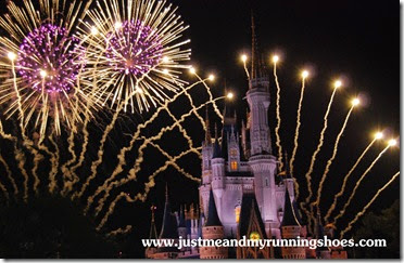 Disney Wordless Wednesday (6)